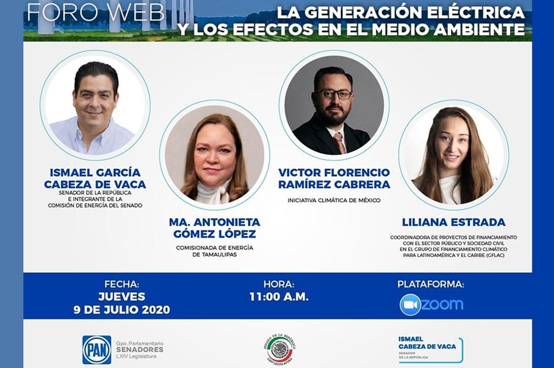 Foro Zoom: Energías Renovables, el Futuro Energético del País.